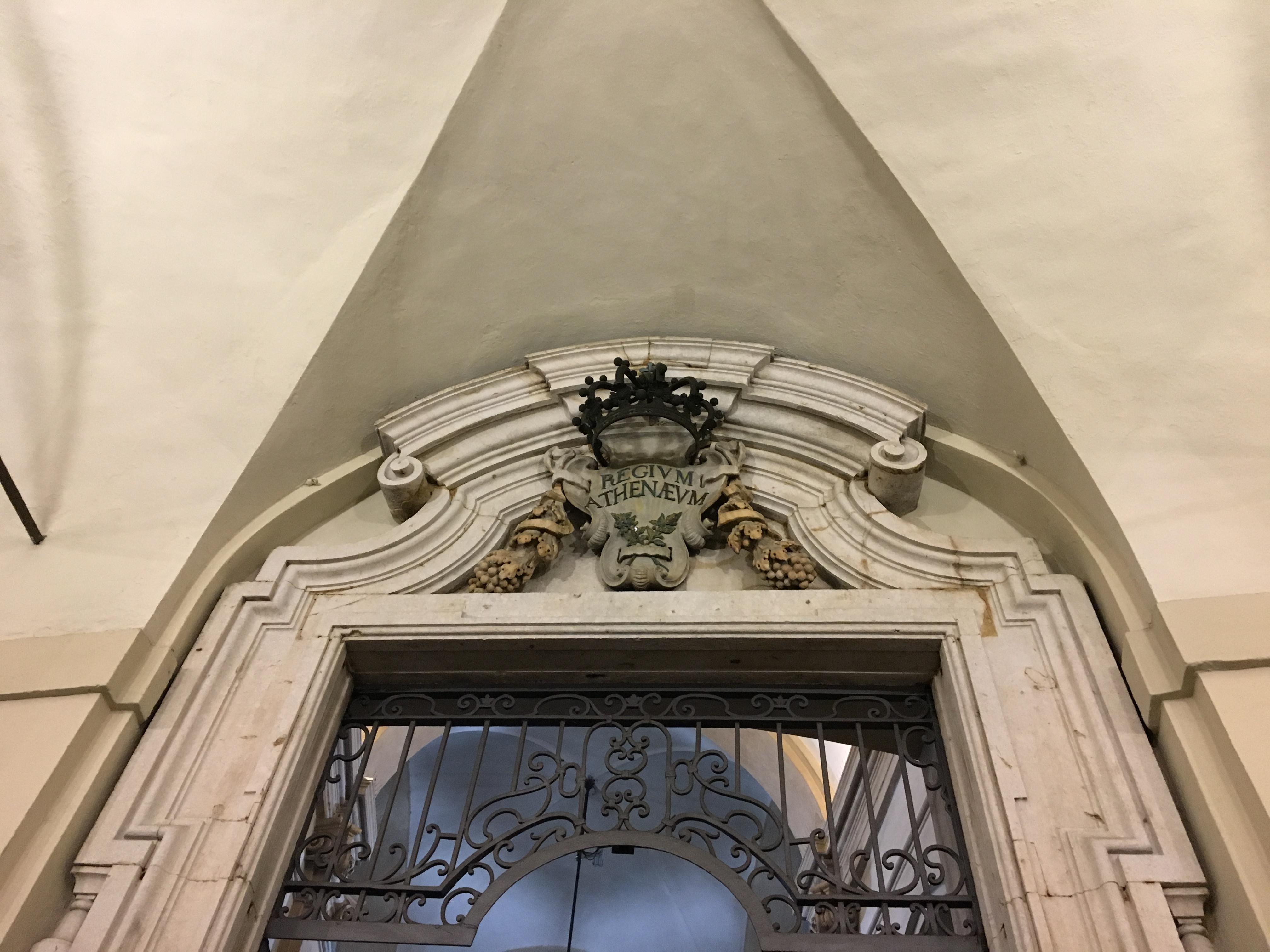 """Torino, l'Università e il suo """"Elogio della follia""""."""
